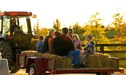 Hayride Rental Carbondale Park District Carbondale Il